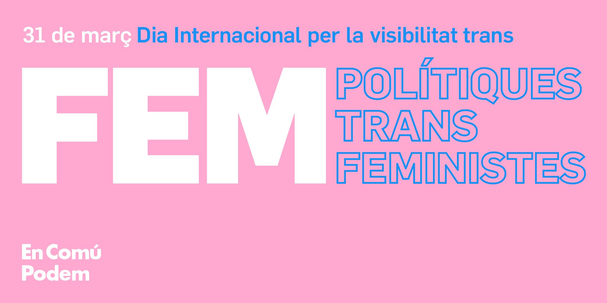 FEM POLÍTIQUES TRANS FEMINISTES